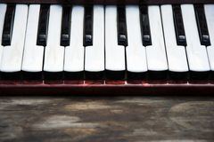 Keyboard of accordian Royalty Free Stock Photo