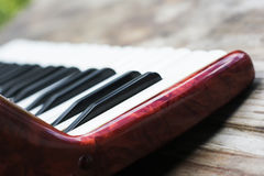 Keyboard of accordian Stock Image