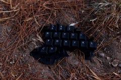 Keyboard. Close up of a piece of broken keyboard Royalty Free Stock Image