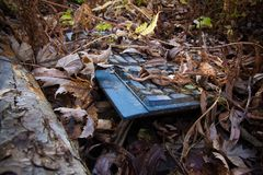 Long forgotten keyboard abandoned in the woods Royalty Free Stock Images