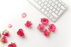 Keyboard with pink roses on white background. Flat lay. Top view Royalty Free Stock Images