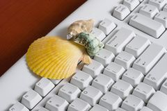 Keyboard with a sea shells Royalty Free Stock Image