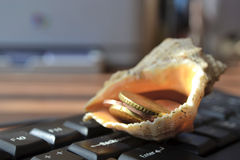 Keyboard with shell Royalty Free Stock Photo