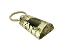 Keychain. With large black beetle Royalty Free Stock Image