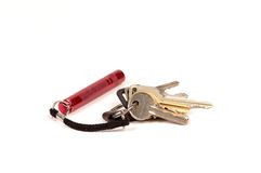 Keychain con la mini torcia elettrica Fotografie Stock Libere da Diritti
