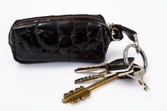 Keychain with leather case Stock Image