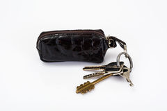 Keychain with leather case Stock Photo