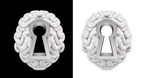 Keyhole brain Stock Image