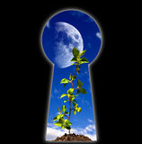 Keyhole - the door Royalty Free Stock Image