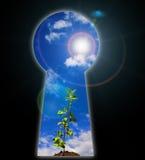 Keyhole - the door Royalty Free Stock Photos