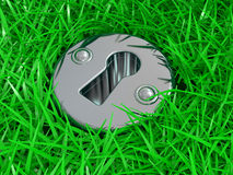 Keyhole in a green grass Stock Images