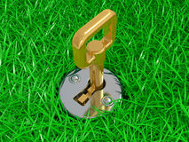 Keyhole and key in a green grass Stock Photography