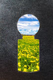 Keyhole to nature. Abstract photo, view through a keyhole on a flower field Royalty Free Stock Photos