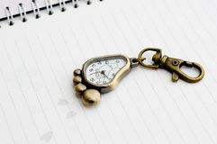 keyringwatch Royaltyfri Bild