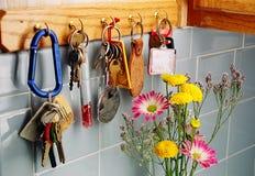 Keys. On hanger Royalty Free Stock Photo