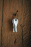 The keys Royalty Free Stock Images