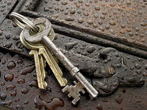 Keys. In the rain Royalty Free Stock Images