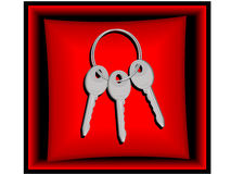 Keys. From the new house in a gift casket in a vector Royalty Free Stock Images