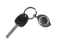 Keys black and white. Keys from the car. Are isolated on a white background Stock Photos