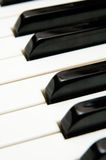 Keys from a grand piano. Keys black and white from a piano Royalty Free Stock Photo