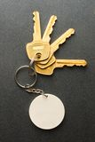 Keys on the grey Royalty Free Stock Images