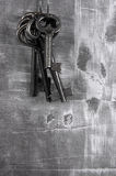 Keys on Grung royalty free stock photos