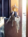Keys hanging in the keyhole of the gate. Bunch of keys in the keyhole of the gate Royalty Free Stock Images