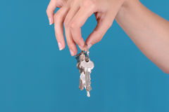 Keys on the keyring Royalty Free Stock Images