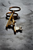 Keys for knowledge and success Royalty Free Stock Image