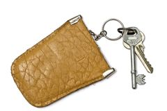 Keys and  leather tag Stock Image