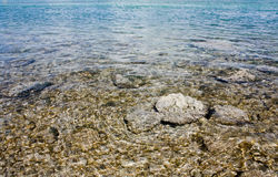 Keys Ocean scenic Stock Photography