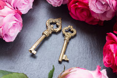 Keys with pink roses Stock Photo