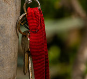 Keys on red strap keyring. Keys on a keyring with red strap hanging from a metal pole in a wooded area Stock Photography