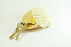 Keys into shell. Two apartment/house/office/door keys into shell on white background royalty free stock photography
