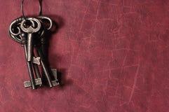 keys skelett Royaltyfri Bild