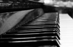 Keys of upright piano Stock Image