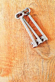 Keys on wooden background Royalty Free Stock Photo