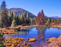 Keystone Colorado Fall Landscape. Fall day in the mountains and lake of Keystone, Colorado, blue cloudless sky, pine trees, reflections on water scene Royalty Free Stock Photos