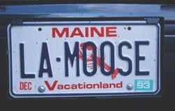 Kfz-Kennzeichen in Maine Stockfotografie