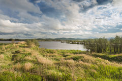 Khabarovsk Krai nas baías de Extremo Oriente de russo do lago pelo Imagem de Stock
