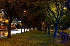 Khabarovsk, Russie - 13 août 2018 : Place de Lénine la nuit sous la lumière des lanternes photographie stock
