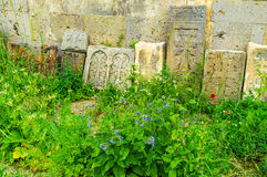 The khachkars among the wildflowers Stock Image
