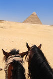 Khafre金字塔在吉萨棉,从马背的埃及 免版税库存照片