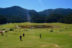 Khajjiar meadows Stock Photos