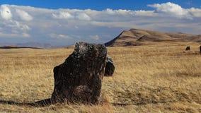 Khakassia Vårlandskap Royaltyfri Bild