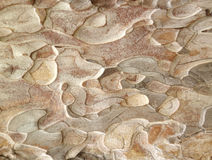 Khaki abstract pattern Stock Images