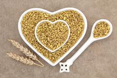 Khamut霍拉桑省麦子 免版税库存照片
