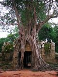 khan ναός preah της Καμπότζης angkor wat Στοκ Εικόνα