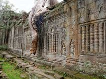 khan ναός preah angkor Στοκ Εικόνες