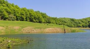 Khanbulan-Reservoir in Lankaran Lizenzfreie Stockfotos